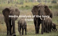 Media Analysis: Ivory Trade