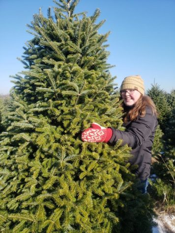 Column:  The Great Christmas Tree Controversy